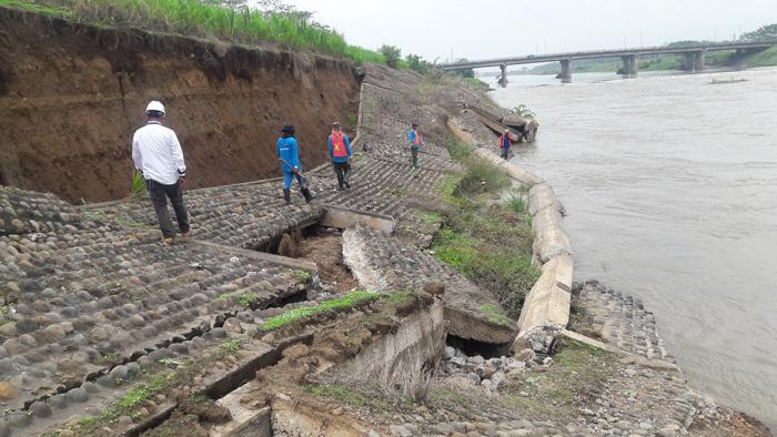 AMBROL: Sejumlah petugas Perum Jasa Tirta I sibuk membehani tanggul Sungai Porong yang ambrol sepanjang 50 meter dengan ketinggian 8 meter karena tergerus erupsi air, Rabu (22/11/2017).