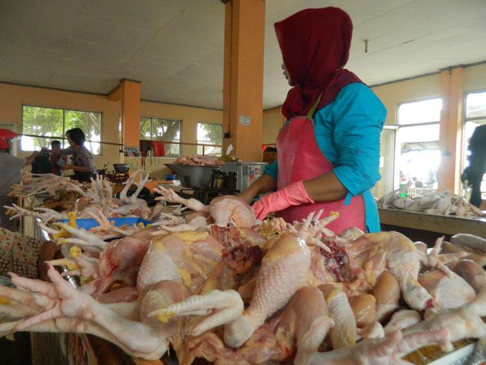 Harga Daging Ayam di Trenggalek Naik