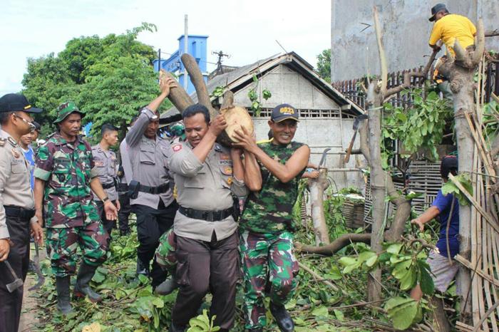 Kompak petugas kesiapsiagaan bencana alam evakuasi reruntuhan akibat diterjang bencana angin puting beliung. (im)