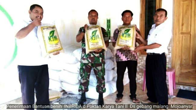 Penerimaan bantuan benih padi subsidi di poktan Karya Tani II Desa Gebang Malang