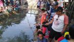 Warga Karombang Antusias Berebut Ikan Lele 1,30 Kuintal