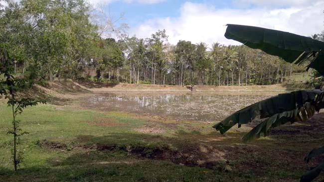 DESA WISATA : Rencana Jadikan Waduk Menjadi Desa Wisata (H MansyurUsman/Memontum.Com)
