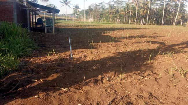Lokasi Pembangunan Sumur Bor Dusun Telogosari. (H Mansyur Usman/Memontum.Com)