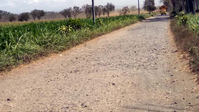 PARAH : Kondisi Jalan Dusun Sumbersari Jambangan. (sur)